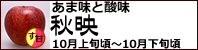 秋映 長野県産りんご