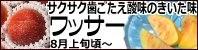 ワッサー 長野県産桃