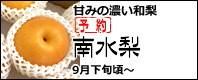 南水梨(なんすいなし) 長野県