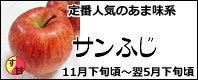 サンふじ 長野県産りんご