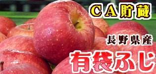 有袋ふじ 長野県産りんご