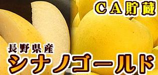 シナノゴールド 長野県産りんご