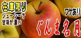 ぐんま名月 長野県産りんご