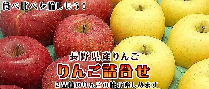 詰合せ 長野県産りんご