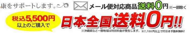 5000円(税別)以上で送料・代引料無料!