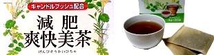 減肥爽快美茶