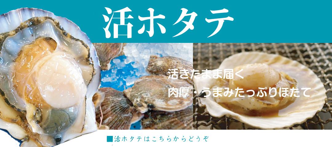宮城県・北海道産ホタテ