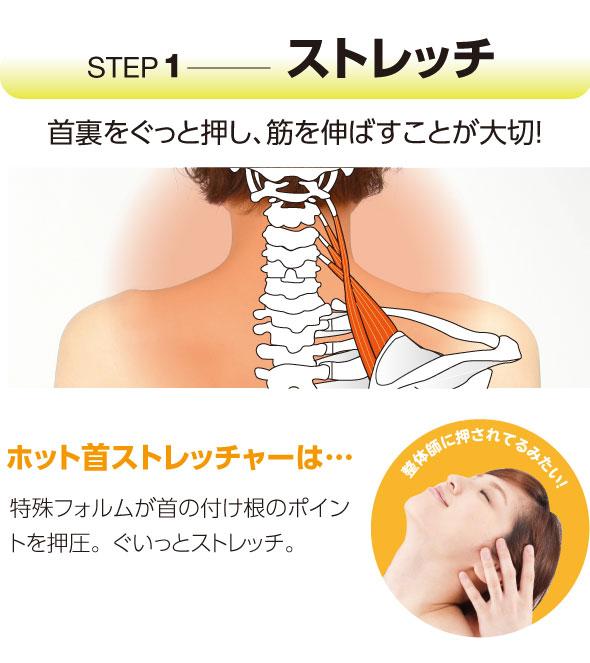 首のストレッチ