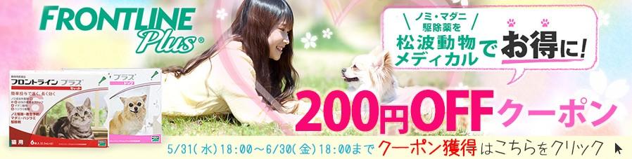 フロントライイン200円オフクーポン