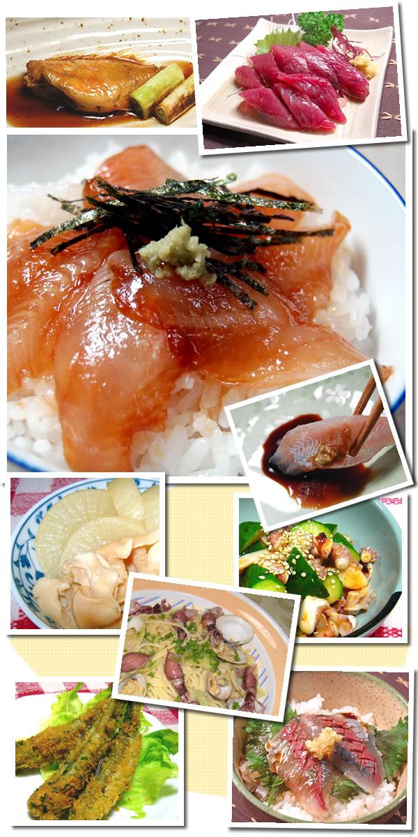 朝とれおまかせ鮮魚・魚介1234