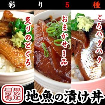 【送料無料】浜坂産 天然魚介で漬けた漬け丼!