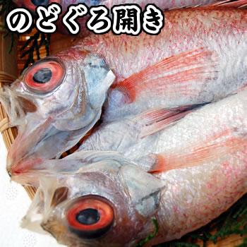 超高級魚のどぐろ一夜干し