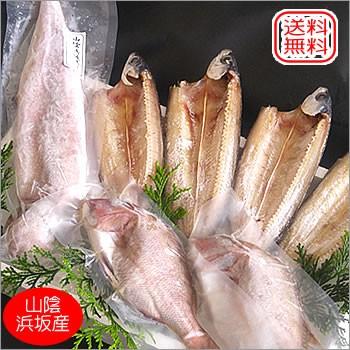 日本海漁火セット