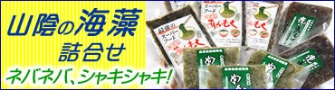 海藻セット