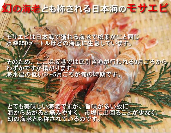 甘くてトロリとした味わい!お刺身最高!日本海の「もさえび」