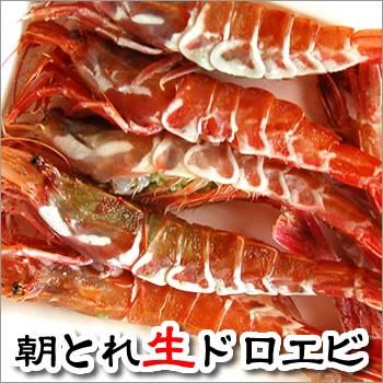 朝とれガラエビ(生) 1kg