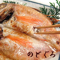 【送料無料】高級魚のどぐろ西京漬け