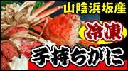 山陰浜坂産 冷凍・子持ちガニ(セコガニ)