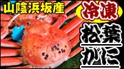山陰浜坂産 冷凍・松葉ガニ