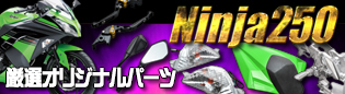 Ninja250パーツ