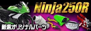 Ninja250Rパーツ