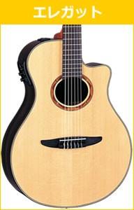 クラシックギターの選び方