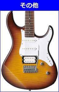 エレキギターの選び方その他