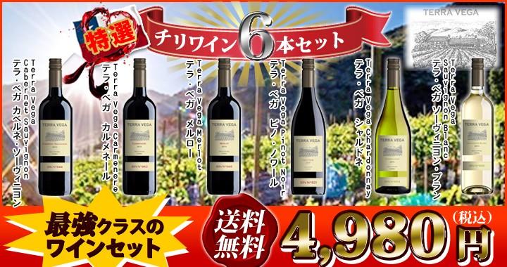 チリワイン6本セット