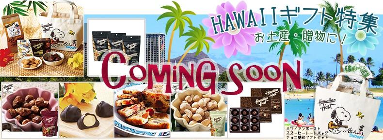 ハワイ特集PR