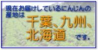 只今のにんじんの産地は千葉県です