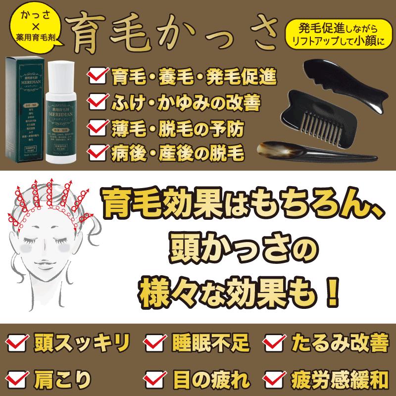 育毛かっさ用の薬用育毛剤メリディアンで頭をかっさする効果