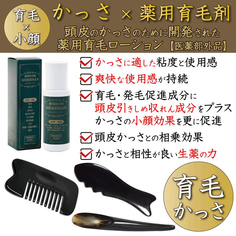 育毛かっさ用に開発された薬用育毛剤メリディアンの特徴