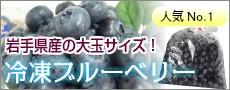 岩手県産の大玉の冷凍ブルーベリー