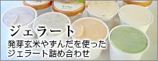 発芽玄米粉やブルーベリーなどを使ったオリジナルのジェラート