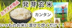 お米に入れて簡単に!発芽玄米