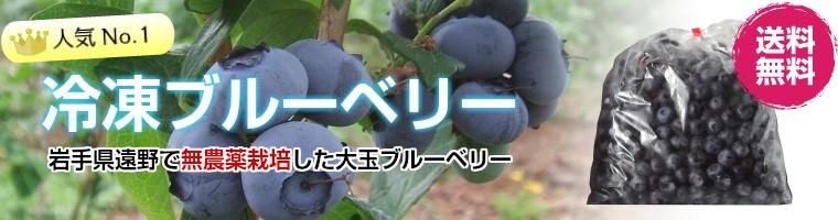 岩手県で育てた大粒の冷凍ブルーベリー
