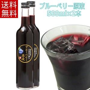 【送料無料】ブルーベリー原液(500ml)2本セット 農薬不使用 砂糖や保存料・添加物を使用していないジュース