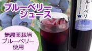 無農薬栽培のブルーベリーから作ったブルーベリージュース