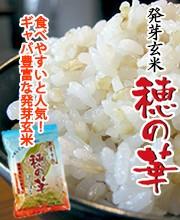 ギャバたっぷりの栄養満点の発芽玄米『穂の華』