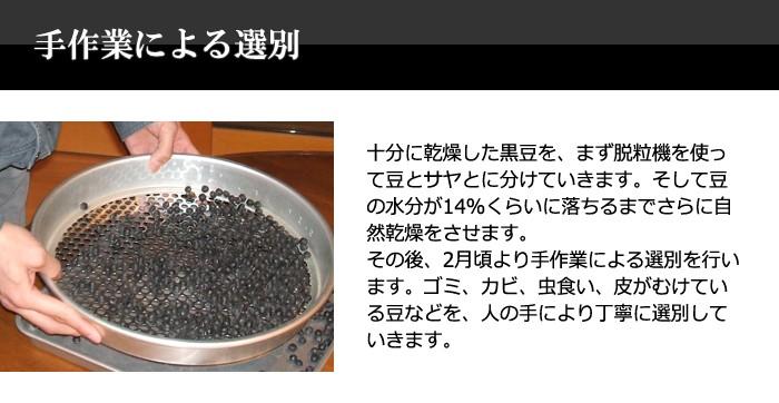 <手作業による選別>十分に乾燥した黒豆を機械を使って豆とサヤとに分けた後、手作業で選別を行っています。