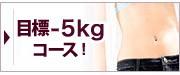 あと5キロやせたい!マイクロダイエット-5キロコース