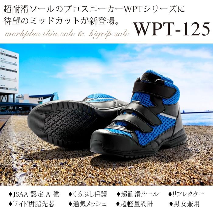 wpt125画像1