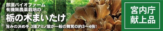 那須バイオファーム栃の木舞茸