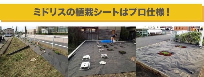 中京ソーラーの植栽シートはプロ仕様