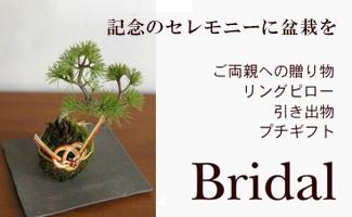 盆栽ウェディング