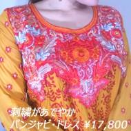 インド刺繍の高級感 パンジャビ・ドレス 通販