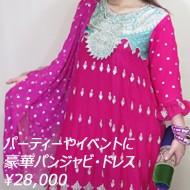 パーティ・ドレスやイベント衣装に 刺繍やビジュー飾りがゴージャスなパンジャビ・ドレス