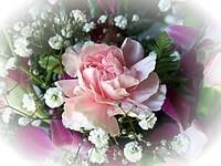 「お客様の声」のページの花の挿絵画像