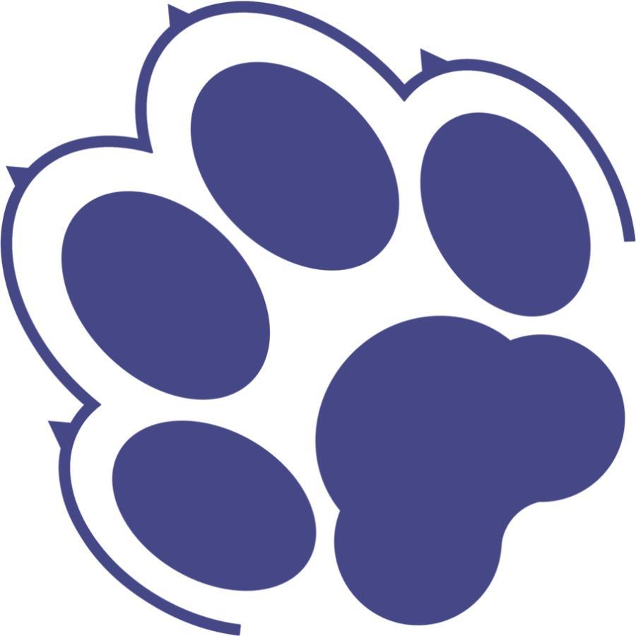 iPhoneケース スマホケース 犬 犬柄 ワンポイント セミオーダー 名入れ 機種が選べる 犬種パターン11 ソフトケース|mimus-shop|13