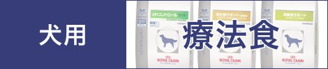 犬用療法食